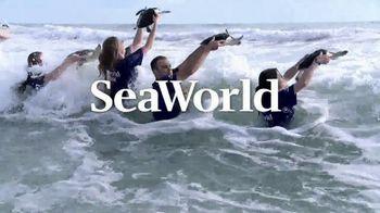 SeaWorld TV Spot, 'Can't Miss Summer' - Thumbnail 10