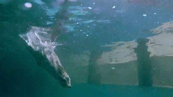SeaWorld TV Spot, 'Can't Miss Summer' - Thumbnail 3