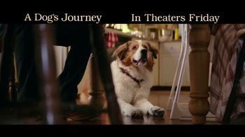 A Dog's Journey - Alternate Trailer 29