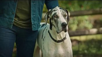 Banfield Foundation TV Spot, 'Safer Together' Featuring Russell Wilson - Thumbnail 1