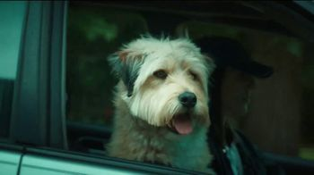 Banfield Foundation TV Spot, 'Safer Together' Featuring Russell Wilson - Thumbnail 7