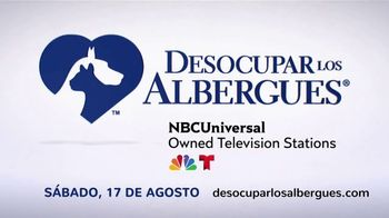 Clear the Shelters TV Spot, 'Telemundo: desocupar los albergues' [Spanish] - Thumbnail 3