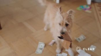 CLEAR TV Spot, 'Dog's Best Friend' - Thumbnail 2