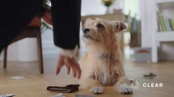 CLEAR TV Spot, 'Dog's Best Friend' - Thumbnail 3