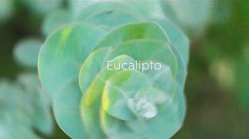 Glade Icy Evergreen Forest TV Spot, 'Espíritu navideño' [Spanish] - Thumbnail 3
