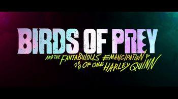 Birds of Prey - Thumbnail 10