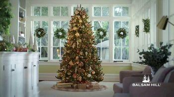 Balsam Hill TV Spot, 'This Tree' - Thumbnail 1