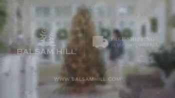 Balsam Hill TV Spot, 'This Tree' - Thumbnail 6