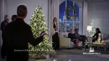 Balsam Hill TV Spot, 'This Tree' - Thumbnail 2