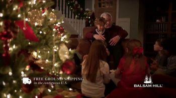 Balsam Hill TV Spot, 'This Tree' - Thumbnail 4