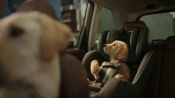 Subaru Forester TV Spot, 'Dog Tested: National Make a Dog's Day' [T1] - Thumbnail 5