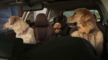 Subaru Forester TV Spot, 'Dog Tested: National Make a Dog's Day' [T1]