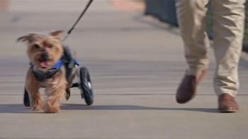 2019 Honda CR-V TV Spot, 'Dog Wheels' [Spanish] [T2] - Thumbnail 9