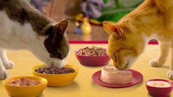Friskies Freebies! Sweepstakes TV Spot, 'So Many Choices' - Thumbnail 6