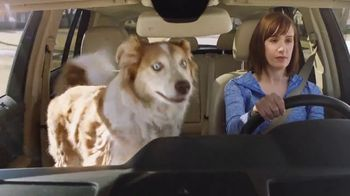 Adaptil TV Spot, 'Car Ride' - Thumbnail 5