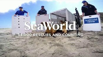 SeaWorld TV Spot, 'Tidal Twister and Electric Ocean' - Thumbnail 8
