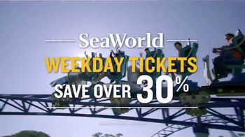 SeaWorld TV Spot, 'Tidal Twister and Electric Ocean'