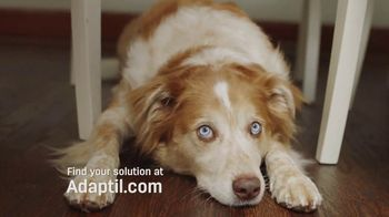 Adaptil TV Spot, 'Dog Freaking About Loud Noises?' - Thumbnail 4