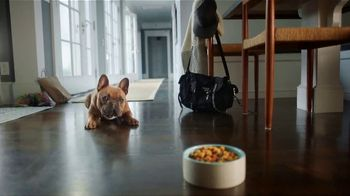 PetSmart TV Spot, 'The Foodie' - 4953 commercial airings