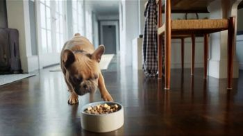 PetSmart TV Spot, 'The Foodie' - Thumbnail 7