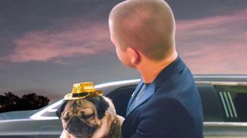 Pedigree TV Spot, '2019 CMT Music Awards: Hunter Hayes' Entourage' - Thumbnail 3