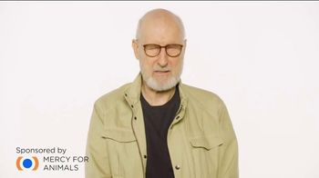 Mercy for Animals TV Spot, 'Dear McDonald's...' Featuring James Cromwell - Thumbnail 2