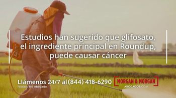 Morgan and Morgan Law Firm TV Spot, 'Linfoma no Hodgkin' [Spanish] - Thumbnail 2