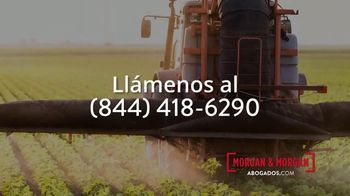 Morgan and Morgan Law Firm TV Spot, 'Linfoma no Hodgkin' [Spanish] - Thumbnail 5