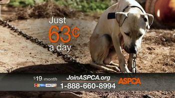 ASPCA TV Spot, 'Nightmare' - Thumbnail 7