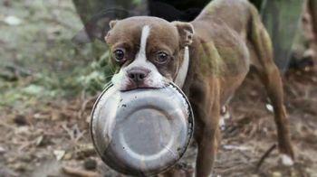ASPCA TV Spot, 'Nightmare'
