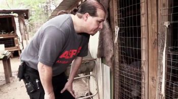 ASPCA TV Spot, 'Nightmare' - Thumbnail 2