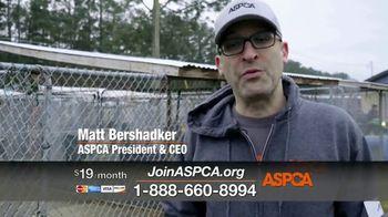 ASPCA TV Spot, 'Nightmare' - Thumbnail 4