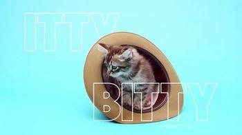 PopSockets PopMinis TV Spot, 'Itty Bitty' - Thumbnail 4