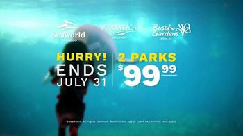 SeaWorld End of Summer Sale TV Spot, 'Real Feels Amazing: Single-Day Tickets' - Thumbnail 9