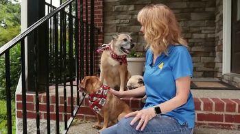 Clear the Shelters TV Spot, 'NBC 4 Nashville: Best Friend' - Thumbnail 7