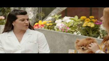 Bravecto Cares TV Spot, 'Programas de entrenamiento' con Elva Saray [Spanish] - Thumbnail 5