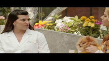 Bravecto Cares TV Spot, 'Programas de entrenamiento' con Elva Saray [Spanish] - Thumbnail 6