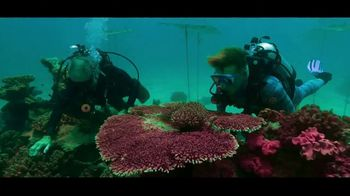 Citizen Watch ProMaster TV Spot, '30 Years: Great Barrier Reef'