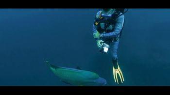 Citizen Watch ProMaster TV Spot, '30 Years: Great Barrier Reef' - Thumbnail 7