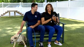 Clear the Shelters TV Spot, 'NBC 10: Bring a New Family Member Home' - Thumbnail 1