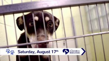 Clear the Shelters TV Spot, 'NBC 10: Bring a New Family Member Home' - Thumbnail 6