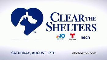 Clear the Shelters TV Spot, 'NBC 10: Bring a New Family Member Home' - Thumbnail 9