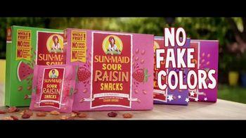 Sun-Maid Raisins Sour Raisin Snacks TV Spot, 'Imagine That!' - Thumbnail 9