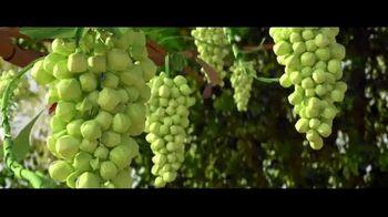 Sun-Maid Raisins Sour Raisin Snacks TV Spot, 'Imagine That!' - Thumbnail 3