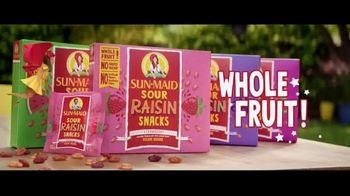 Sun-Maid Raisins Sour Raisin Snacks TV Spot, 'Imagine That!' - Thumbnail 8