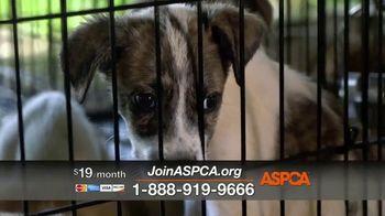 ASPCA TV Spot, 'Shocking Situations' - Thumbnail 7
