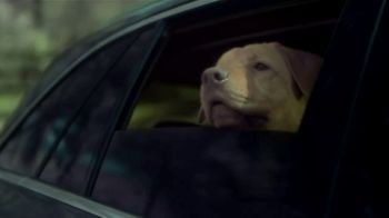 Mercedes-Benz Summer Event TV Spot, 'Rescue' Song by Layup [T2] - Thumbnail 5