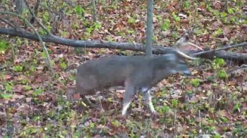 Drury Outdoors DeerCast TV Spot, 'Game Tracking Troubles' - Thumbnail 6