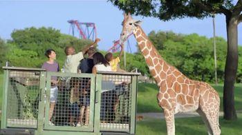 Busch Gardens Bier Fest TV Spot, 'New Thrills on Tap' - Thumbnail 3
