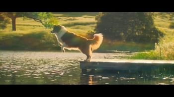 Rocket Mortgage TV Spot, 'More Than a Yard' Song by Bob Dylan - 3443 commercial airings